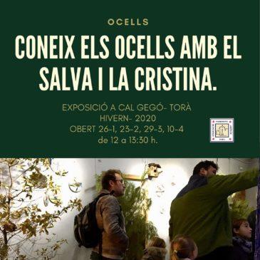 Exposició 'Coneix els ocells amb el Salva i la Cristina'